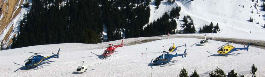 Helicopter Types - Helicopters parked include: Bell 206, Bell 407, Eurocopter AS350, Eurocopter AS355, Robinson R22 and Robinson R44